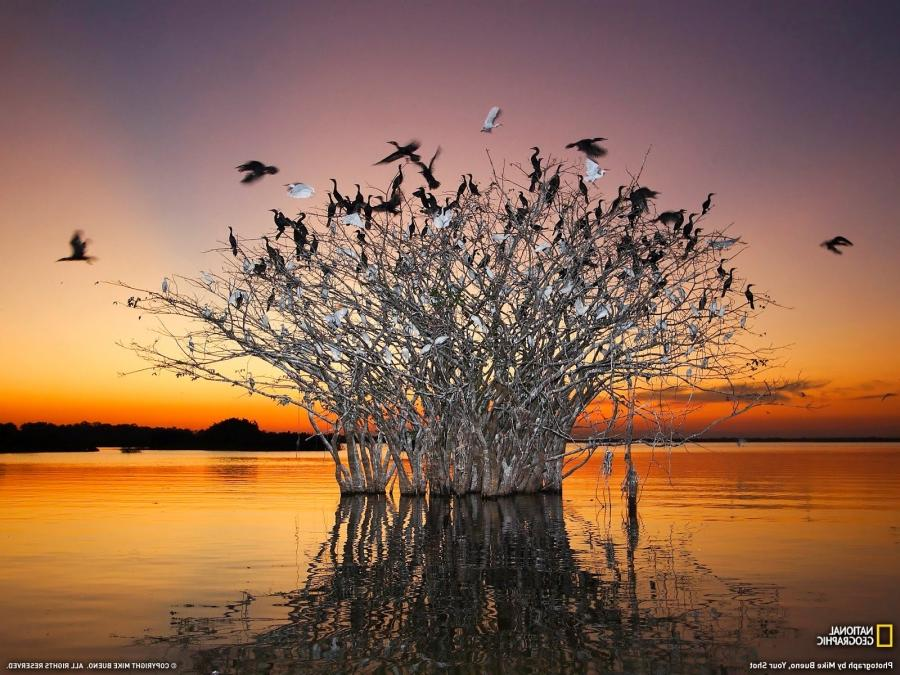 Photo Of The Day: National Geographic Photo Of The Day Wallpaper